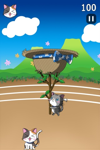 Screenshot Cats Toss